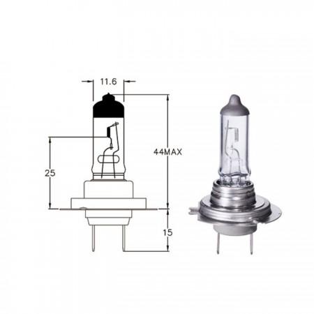 Hauptscheinwerferlampe